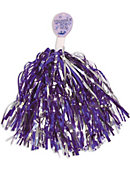 Curry College Shimmer Pom