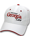 University of Georgia Wordmark 3-D Cap