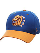 Tennessee Wesleyan College Performance Adjustable Cap