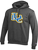 Tennessee Wesleyan College Hooded Sweatshirt