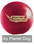 Boston College 2.5' ORBEE Ball