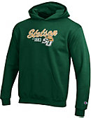 Stetson University Hatters Youth Hooded Sweatshirt