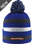 University of Wisconsin - Platteville Knit Hat