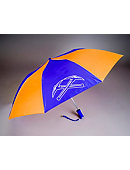 University of Wisconsin - Platteville 48'' Umbrella