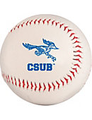 California State University Bakersfield Baseball Promo