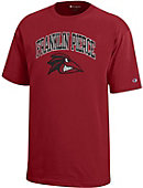 Franklin Pierce University Ravens Youth T-Shirt