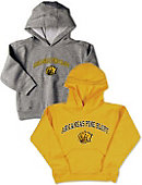 University of Arkansas at Pine Bluff Toddler Hooded Sweatshirt