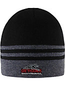 University of Indianapolis Striped Beanie