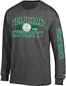 Felician University Golden Falcons Long Sleeve T-Shirt
