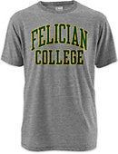 Felician College Victory Falls T-Shirt