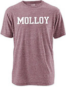 Molloy College Twisted Tri-Blend T-Shirt