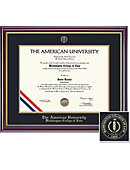 American University 16'' x 20'' Windsor Diploma Frame