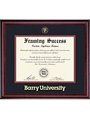 Barry University 11'' x 14'' Classic Diploma Frame