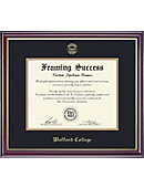 Wofford College 8.5'' x 11'' Windsor Diploma Frame