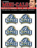 University of New Haven Chargers Face Cal Decal