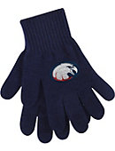 Daniel Webster College Eagles Knit Gloves