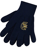 Canisius College Griffins Knit Gloves