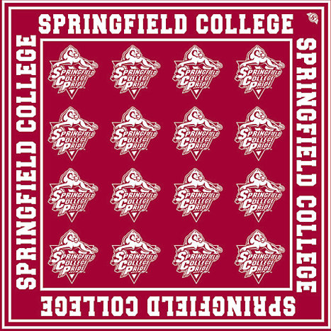 Product: Springfield College 22