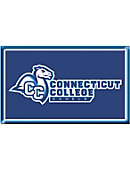 Connecticut College Camel 2.2''x3.6'' Dome Magnet