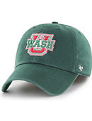 Washington University Bears Franchise Cap