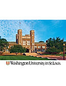 Washington University ''5 x 7'' Postcard