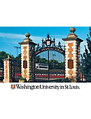Washington University 'The Francis Field' ''5 x 7'' Postcard