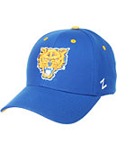 Fort Valley State University Wildcats Performance Adjustable Cap