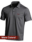 Southern Illinois University Salukis Polo