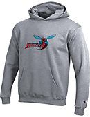 Delaware State University Hornets Youth Hooded Sweatshirt