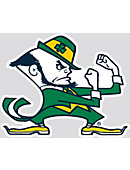 University of Notre Dame Fighting Irish Wallee Sign