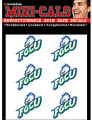 Florida Gulf Coast University Eagles Face Decal