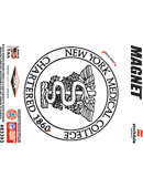New York Medical College 4' x 4' Magnet