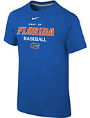 Nike University of Florida Top Tier Locker Youth T-Shirt