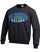 University of Florida Gators Youth Crewneck Sweatshirt