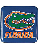 University of Florida Magnet