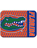 University of Florida Gators Rectangle Magnet