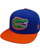 University of Florida Florida Snapbak Cap