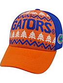 University of Florida Gators Christmas Cap