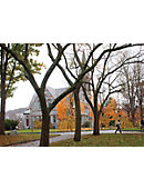 University of Massachusetts - Amherst ''5 x 7'' Postcard