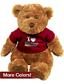 University of Massachusetts - Amherst I Heart' 10'' Bear Plush