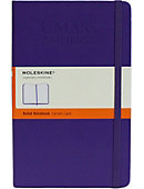 University of Massachusetts - Amherst 13 in. x 21 in. Moleskin