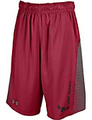 Saint Joseph's University Hawks Shorts