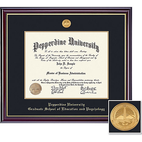 Top 20 Online Doctor of Business Administration Programs