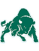 Bethany College Bison 4' x 4' Magnet