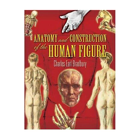 ISBN: 9780486455525, Title: ANATOMY & CONSTRUCTION HUMAN F