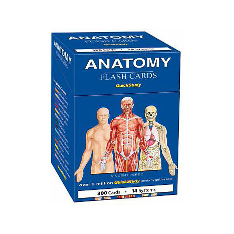 ISBN: 9781423204237, Title: ANATOMY FLASH CARDS