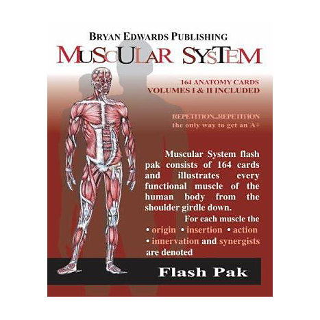 ISBN: 9781878576057, Title: MUSCULAR SYSTEM FLASH ANAT PAK