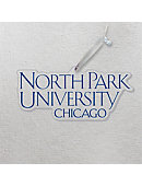 North Park University 3'x4' Glass Ornament