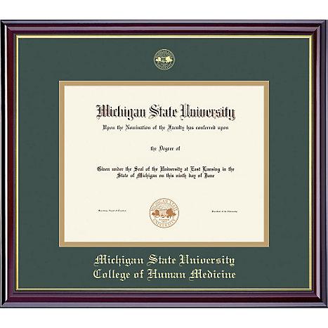 Michigan State University 11 x 14\