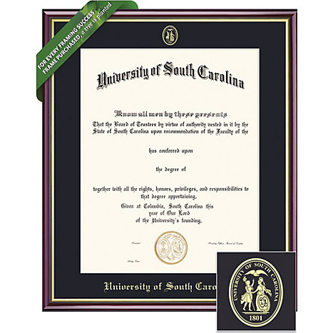University of South Carolina 11\'\' x 14\'\' Value Price Academic ...